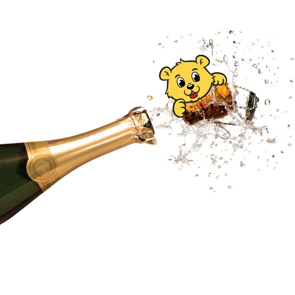 teddy-champagne-nologo